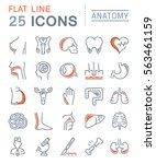 set vector line icons  sign and ...   Shutterstock .eps vector #563461159