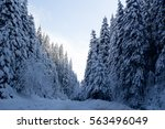 snowy road through the forest | Shutterstock . vector #563496049