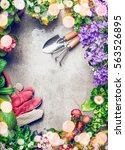 gardening background with... | Shutterstock . vector #563526895