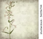 textured old paper background...   Shutterstock . vector #56356744