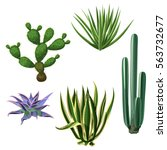 cactuses and succulents set.... | Shutterstock .eps vector #563732677
