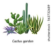 card with cactuses and... | Shutterstock .eps vector #563732689