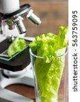 concept healthy food inspection ... | Shutterstock . vector #563759095