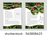 abstract vector layout...   Shutterstock .eps vector #563808625