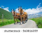 horses pulling a carriage in... | Shutterstock . vector #563816359