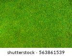 green grass natural wall...   Shutterstock . vector #563861539