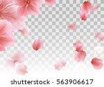 Pink Sakura Petals Flying....