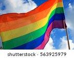rainbow flag  lgbt movement  on ...   Shutterstock . vector #563925979