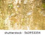 brown old worn brick wall... | Shutterstock . vector #563953354
