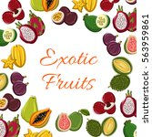 exotic tropical fruits vector... | Shutterstock .eps vector #563959861