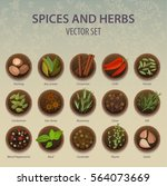 seasoning and spice  herbs on... | Shutterstock .eps vector #564073669