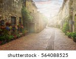 flower filled streets of the... | Shutterstock . vector #564088525