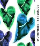 seamless tropical flower  plant ... | Shutterstock . vector #564105739