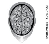 human brain top view | Shutterstock .eps vector #56410723