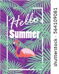 hello summer purple poster with ... | Shutterstock .eps vector #564109081