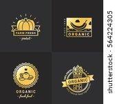 organic food gold logo vintage... | Shutterstock .eps vector #564224305