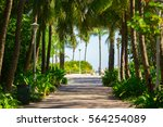 walkway to famous south beach ... | Shutterstock . vector #564254089