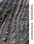 Small photo of Geological rock stratum along California's Pacific coast. Vertical.