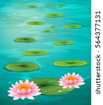 two lotus flowers and leaves on ... | Shutterstock .eps vector #564377131