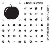 apple icon illustration... | Shutterstock .eps vector #564425044