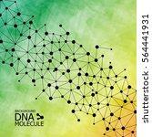 abstract dna background. vector ... | Shutterstock .eps vector #564441931