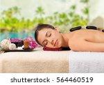 spa. | Shutterstock . vector #564460519