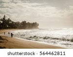 paradise beach on a tropical... | Shutterstock . vector #564462811