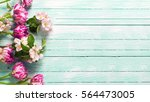 border from spring  tulips... | Shutterstock . vector #564473005