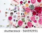 Stock photo flower background photo 564592951
