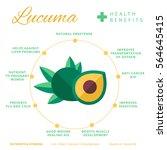 lucuma fruit health benefits...   Shutterstock .eps vector #564645415