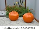 a contemporary garden with... | Shutterstock . vector #564646981