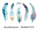 hand drawn watercolor paintings ... | Shutterstock . vector #564667471