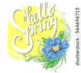 hello spring lettering on... | Shutterstock .eps vector #564696715