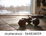 picture of sport equipment in... | Shutterstock . vector #564818059
