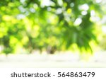 abstract nature background | Shutterstock . vector #564863479