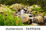 Bulgarian Nature Background ...