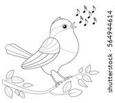 songbird coloring picture  ... | Shutterstock .eps vector #564944614
