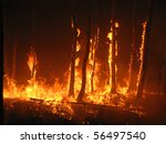 burning trees in the forest   Shutterstock . vector #56497540
