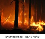 hell in the forest | Shutterstock . vector #56497549