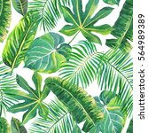 green palm leaves on the white... | Shutterstock . vector #564989389