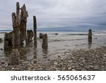 beach of picnic point during... | Shutterstock . vector #565065637