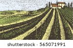vintage engraved  hand drawn... | Shutterstock .eps vector #565071991