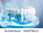 dental tooth dentistry student... | Shutterstock . vector #565078621