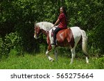 that was a great bareback ride | Shutterstock . vector #565275664