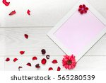 top view of red dry petal ... | Shutterstock . vector #565280539