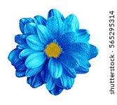 surreal dark chrome blue... | Shutterstock . vector #565295314
