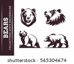 Bears Collections   Vector...