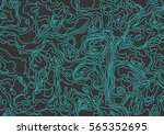 seamless pattern. topographic... | Shutterstock .eps vector #565352695
