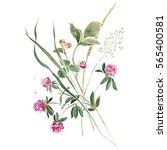 delicate bouquet of herbs with... | Shutterstock . vector #565400581