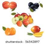 group of fruit. vector. | Shutterstock .eps vector #56542897